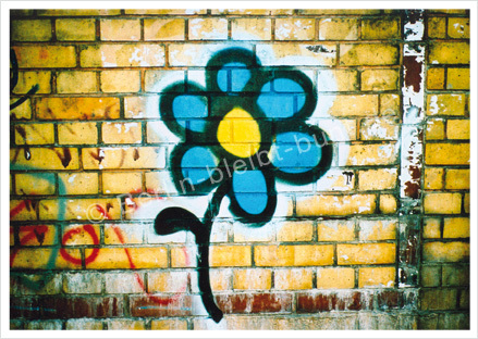 Postkarte GS-275 / Berlin-Graffity-Blume