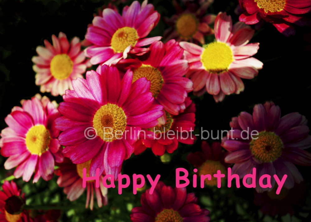 Flower Postcard B 029 Happy Birthday